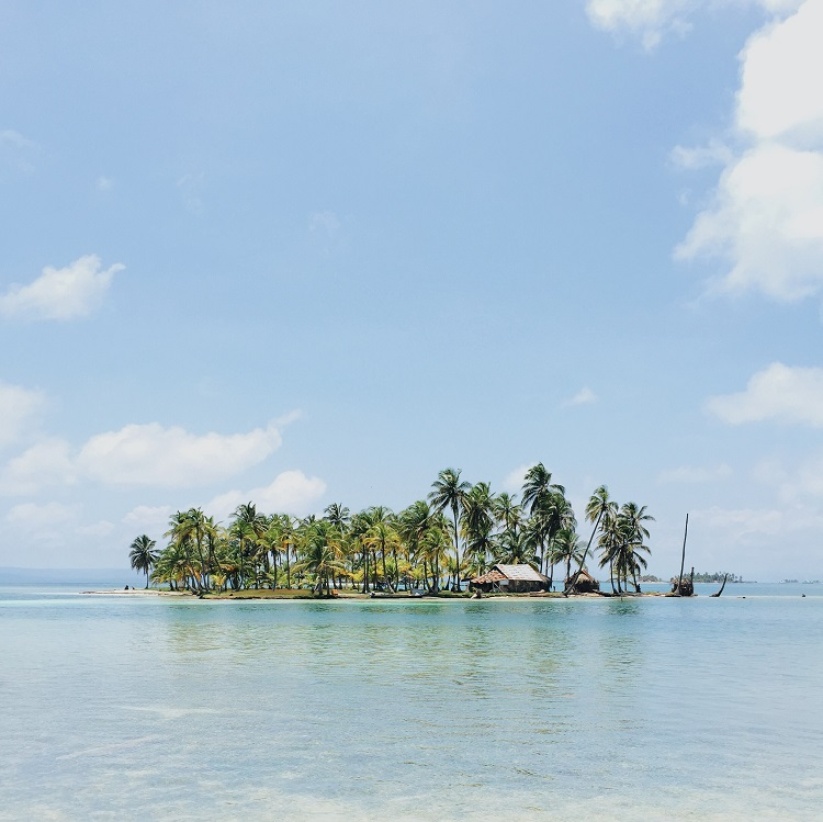 A small island covered in palm trees in the middle of the sea near Panama