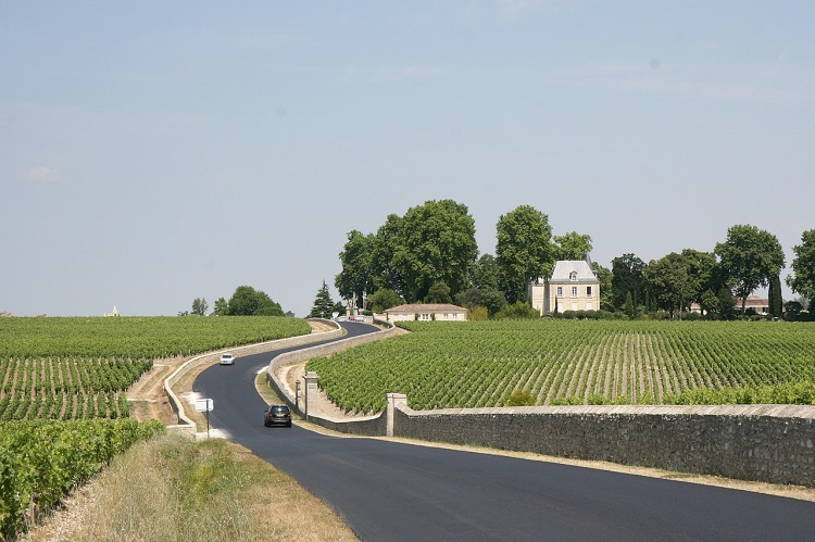 Car driving down a country road between two vineyards in Bordeaux