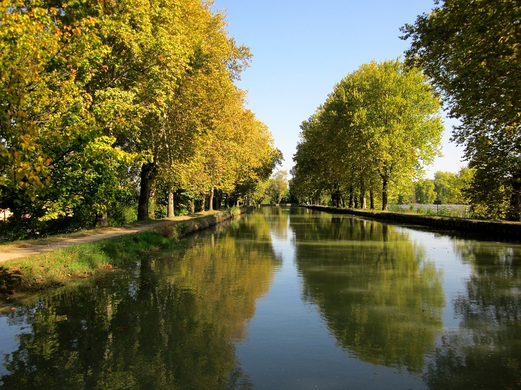 Bordeaux's Canal de Garonne bordered by autumn trees turning orange