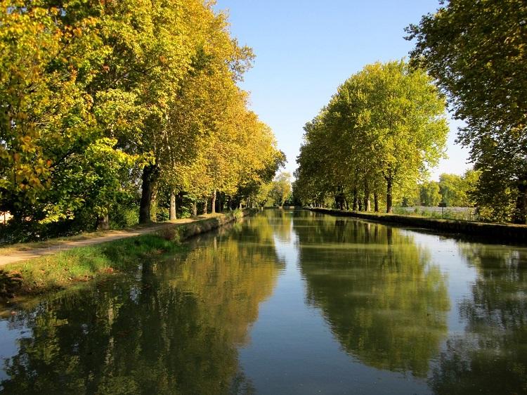 Bordeaux's Canal de Garonne bordered by autumn trees turning orange