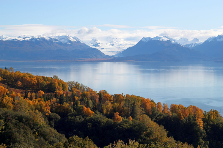 Green and orange trees in front of a vast lake and mountains in Kachemak Bay