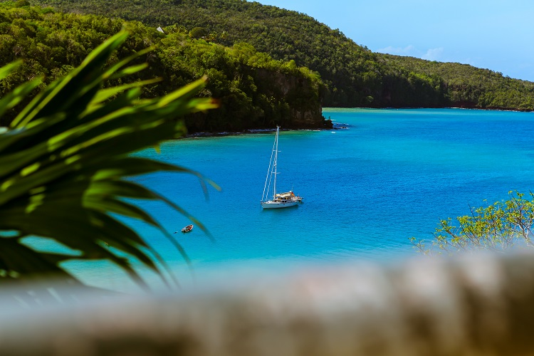 A boat in the bright blue sea of St Lucia, behind a foreground of lush vegetation