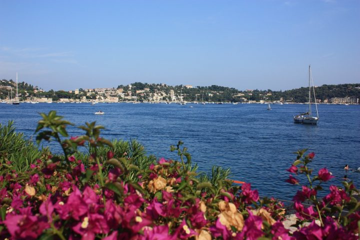 A yacht pulling into the harbour in Villefranche-sur-Mer, with flowers in the foreground