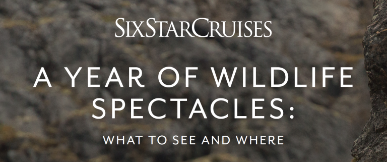 Download your guide to wildlife spectacles across the world, and when to see them
