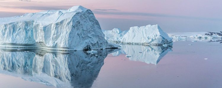 Icebergs bathed in pink light during Antarctica river cruises