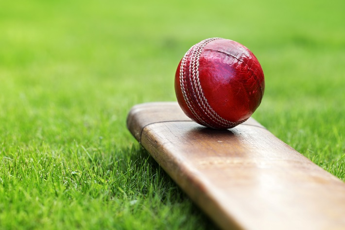 A shiny red cricket ball sitting on a cricket bat on a lush field