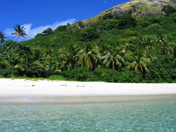 Lush rainforest lining a bright white beach in Fiji