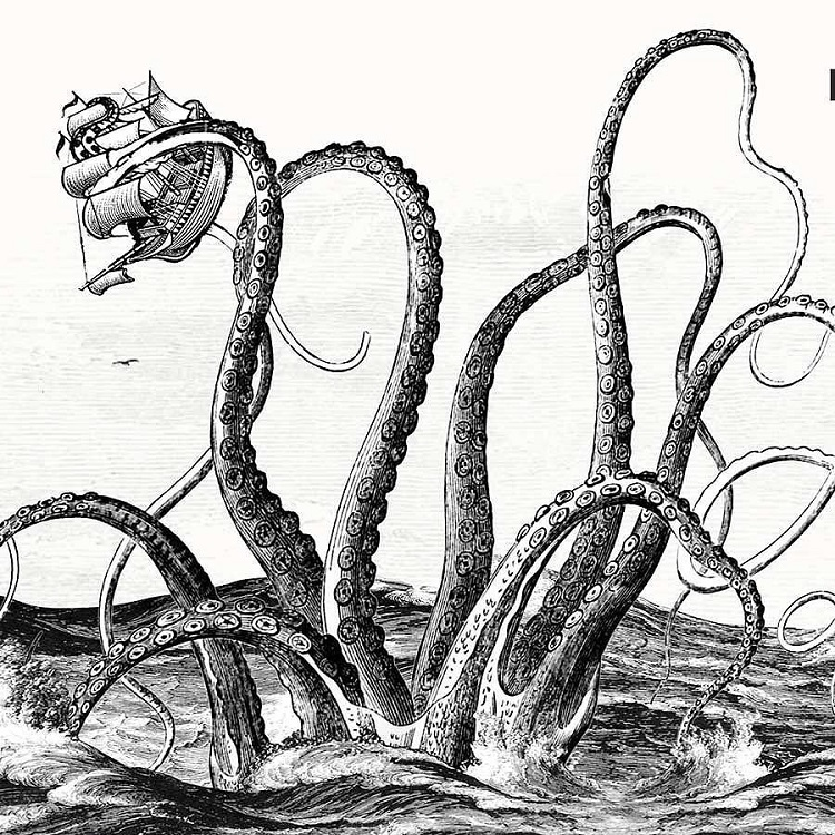 Illustration of a Nordic kraken seizing a ship from the sea