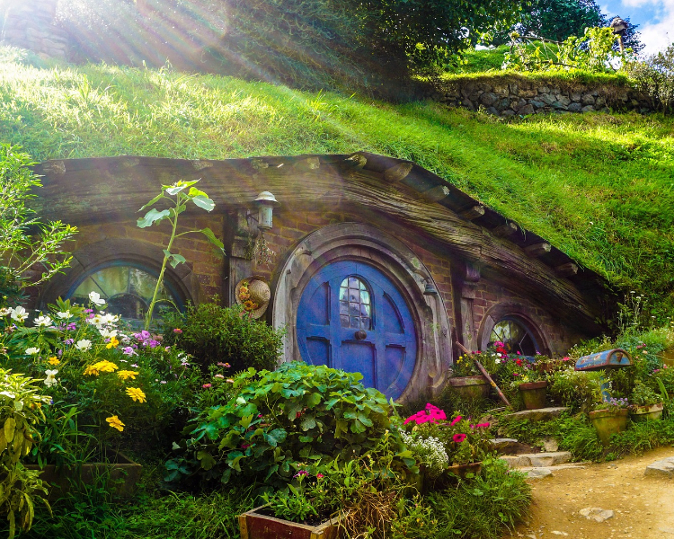 Visit Hobbiton in New Zealand - a popular destination for film location cruises