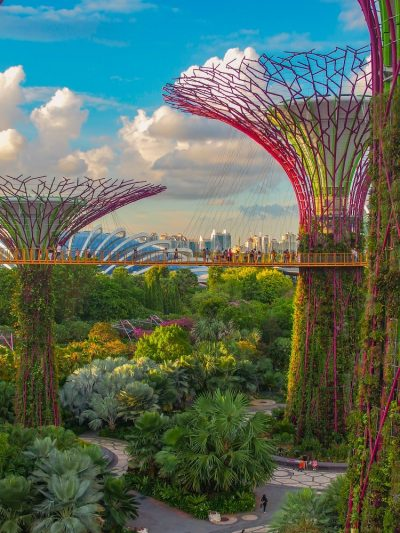 Colourful supertrees at Gardens by the Bay in Singapore