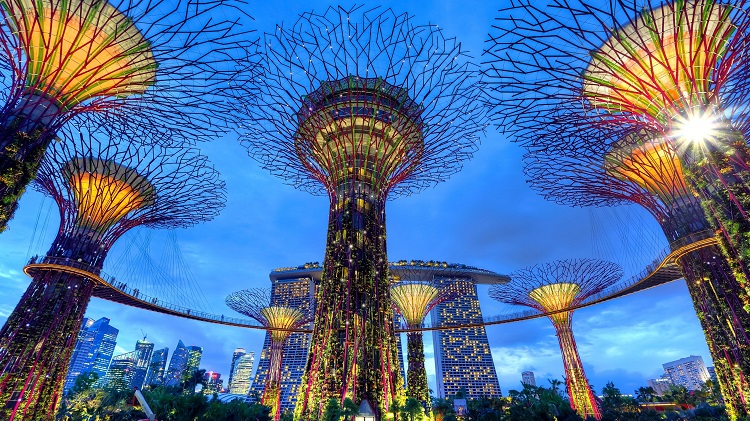 Singapore's Gardens by the Bay at night