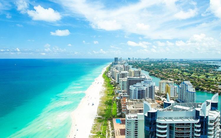 Skyscrapers lining lush Miami beach