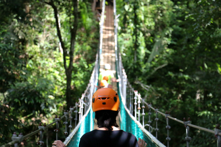 Tourists on a rainforest canopy walk in Belize