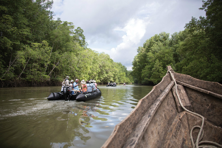 Guests on a Zodiac excursion through the Central American rainforest