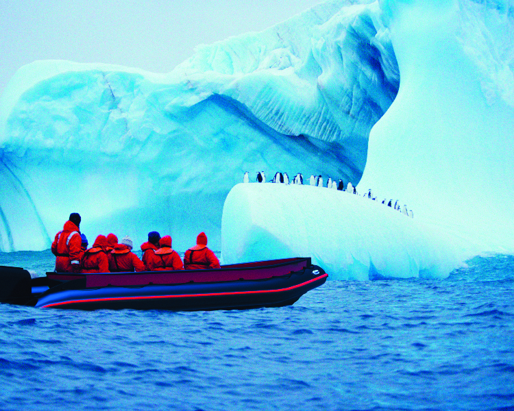 Excursion on a Zodiac viewing penguin colonies