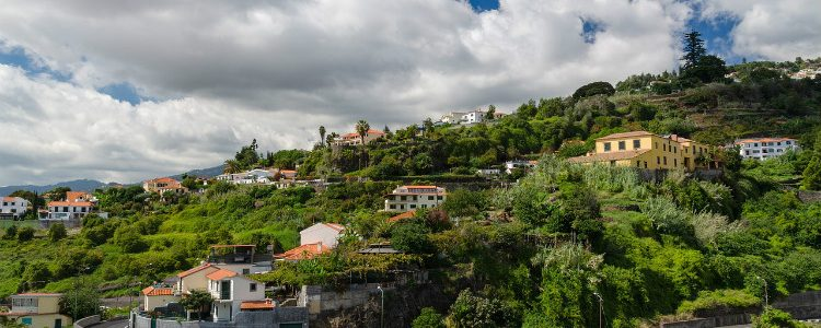 Lush trees and picturesque buildings in Madeira in Portugal