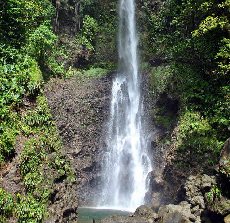 Morne Trois Pitons National Park - Waterfall and Emerald Pool
