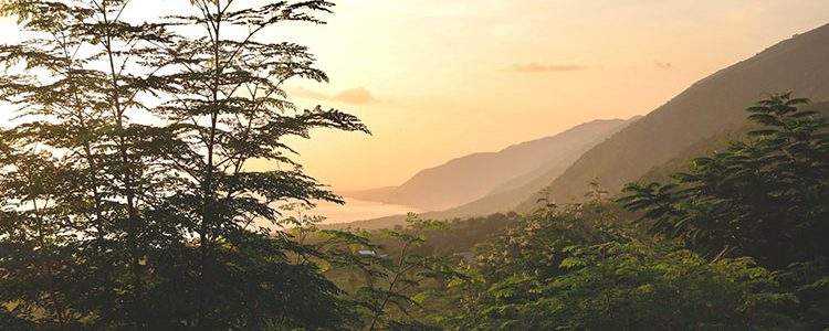 Caribbean Hike