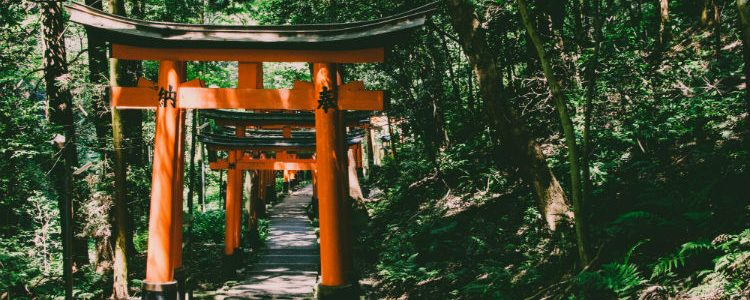 Kyoto - Fushimi Inari Shrine - Japan