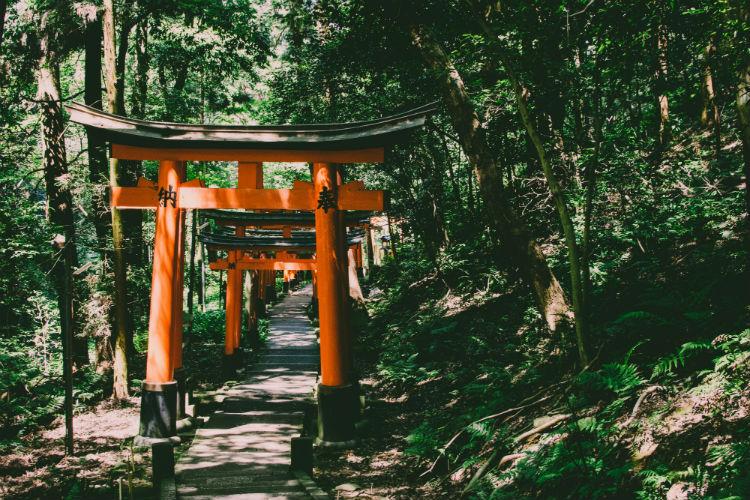Kyoto - Fushimi Inari Shrine - Japan