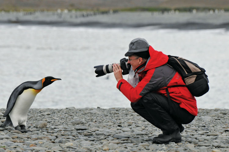 Photographer and penguin - Silversea