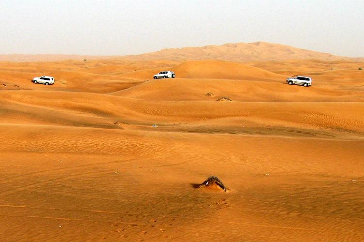 Desert Safari - Dubai - Middle East