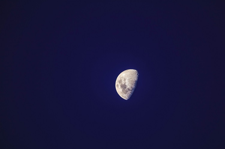 Half moon with craters covered in shadow in the evening sky