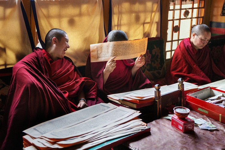 Monks studying and laughing at a monastery in Tibet