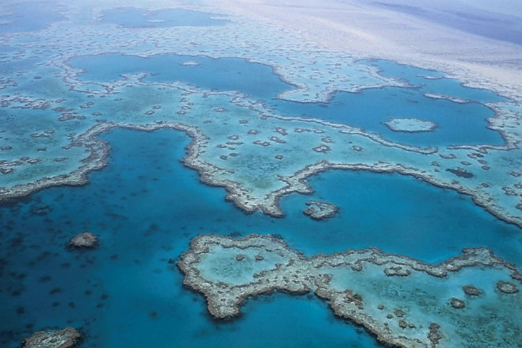 Great Barrier Reef - Whitsunday Islands, Australia